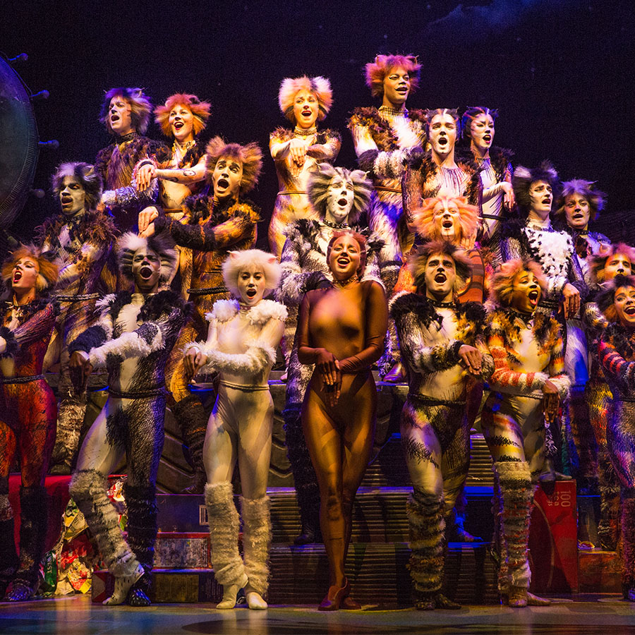 Entire cast from CATS